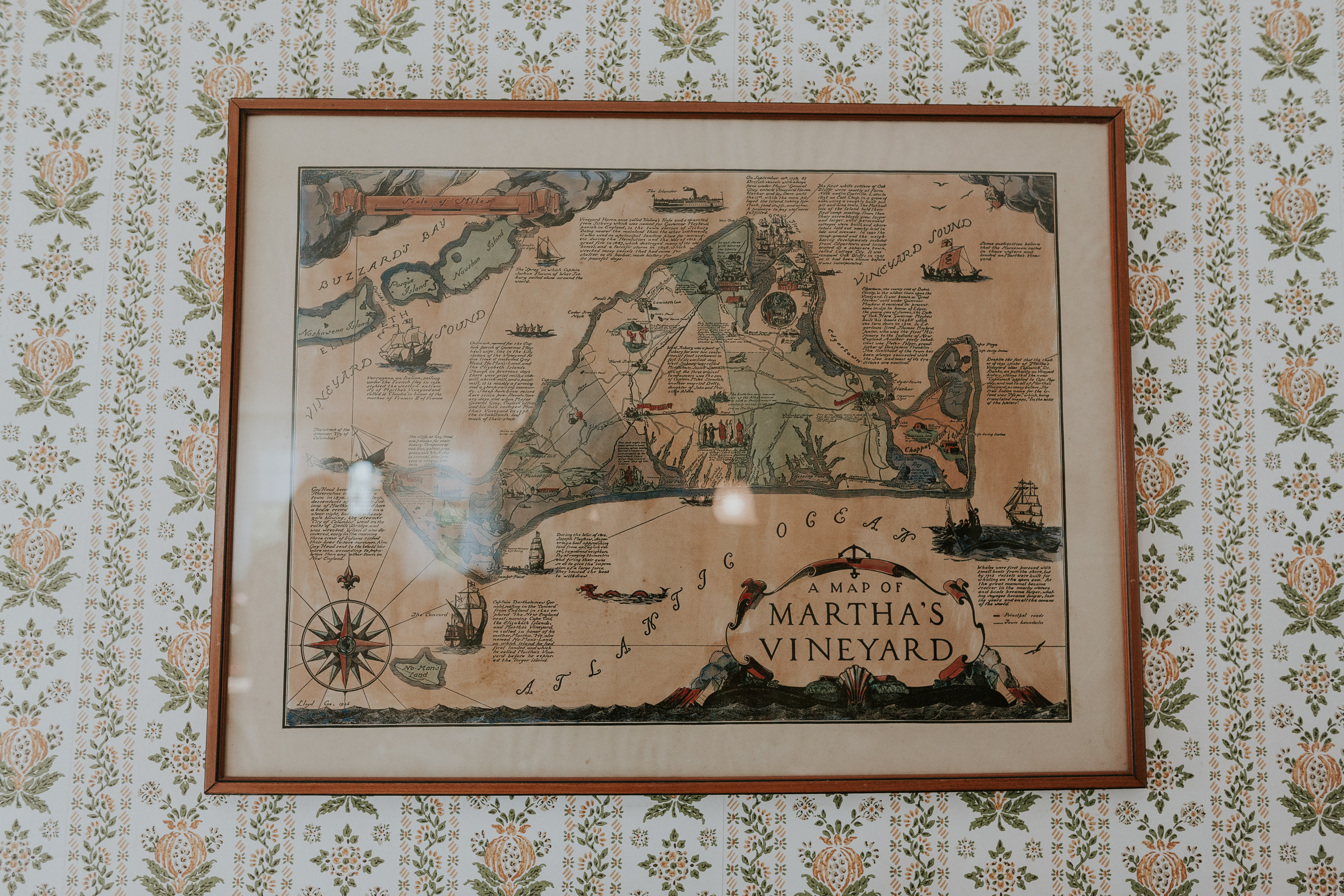 map of martha's vineyard, map on wall, map of island, picture of martha's vineyard on wall, wallpaper wall, vineyard